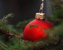 рождественская елка bauble стоковое фото