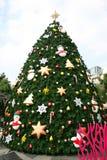 Рождественская елка outdoors, Таиланд. Стоковые Изображения