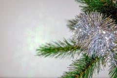 Рождественская открытка, ветвь рождественской елки с игрушкой стоковая фотография