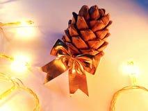 Рождественская открытка с крупным планом конуса кедра Стоковые Изображения