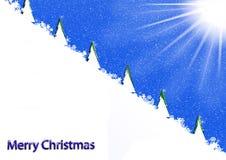 Рождественские елки на горном склоне Стоковая Фотография
