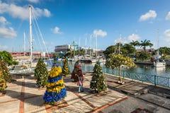 Рождественские елки на улицах Бриджтауна в Барбадос стоковое фото