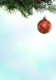 рождество ветви bauble Стоковая Фотография RF