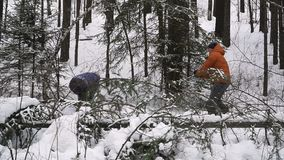 Рождество встречи в лесе сток-видео