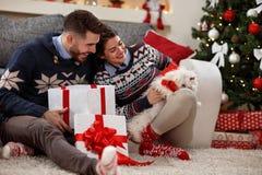 Рождество дома с милым Meltzer как настоящий момент Стоковые Фото