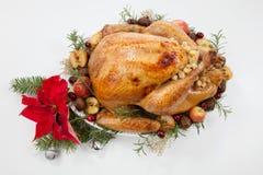 Рождество зажарило в духовке Турцию с яблоками самосхвата над белизной стоковые фото
