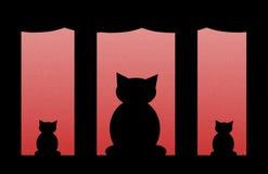 рождество котов Стоковые Изображения