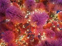 рождество моя версия вектора вала портфолио Конец-вверх рождественской елки Гирлянды на конце-вверх мех-дерева Красные и фиолетов Стоковое Изображение RF