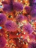 рождество моя версия вектора вала портфолио Конец-вверх рождественской елки Гирлянды на конце-вверх мех-дерева Красные и фиолетов Стоковые Изображения RF