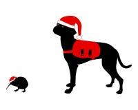 рождество одевает киви собаки Стоковая Фотография