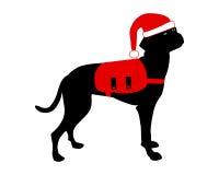 рождество одевает собаку Стоковое фото RF