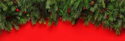 Рождество разветвляет предпосылка Стоковое фото RF
