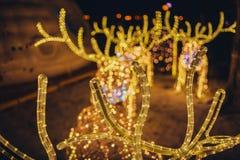 Рождество Света праздника города ночи Стоковая Фотография