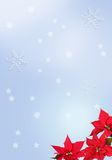 рождество сини предпосылки Стоковое Фото