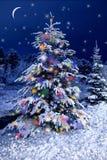 рождество украшает идеи украшения свежие домашние к рождество моя версия вектора вала портфолио Открытка ночи рождества C стоковая фотография