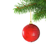 рождество bauble вися spruce Стоковые Фото