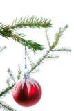 рождество bauble Стоковые Изображения