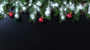 Рождество Snowy разветвляет с красными орнаментами на черной предпосылке стоковые фотографии rf