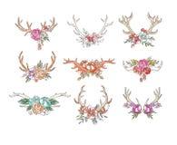 Рожки оленей с цветками и заводами устанавливают, вручают вычерченный флористический состав с иллюстрациями вектора antlers на бе иллюстрация вектора