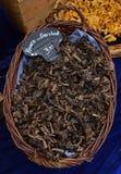 Рожок гриба множества продал в корзине ротанга на рынке утра Амстердама Стоковая Фотография