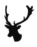 Рожок оленей Стоковые Фото