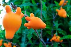 Рожочок баклажана Стоковое Изображение