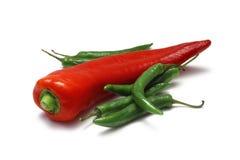 рожочок chili быков Стоковое Изображение