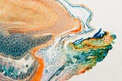Рожь долгоносика медицинской лаборатории подготовленная микроскопическая Стоковое Фото