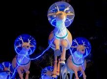 Рождественская вечеринка оленей дождя на ноче Стоковое Фото