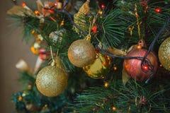 рождественская елка ветви шариков Стоковые Фотографии RF
