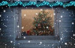 Рождественская елка вне окна Стоковая Фотография
