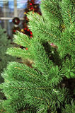 Рождественская елка в магазине игрушек Стоковые Изображения RF