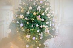 Рождественская елка в роскошном интерьере Стоковые Изображения