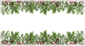 Рождественская елка в снеге, конусы, красные ягоды изоляция знаменитость Стоковые Фото