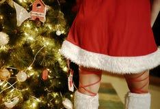 Рождественская елка и юбка девушки Санта Клауса Стоковая Фотография