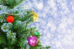 рождественская елка сини предпосылки Дерево Новый Год Стоковая Фотография RF