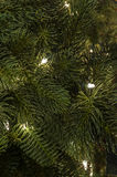 Рождественская елка с белыми светами Стоковая Фотография