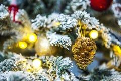 Рождественская елка с белым заморозком на штырях Стоковое Изображение