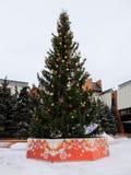 Рождественская елка с гирляндой и звездой стоковая фотография