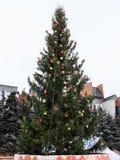Рождественская елка с гирляндой и звездой стоковые изображения
