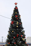 Рождественская елка с гирляндой и звездой стоковые изображения rf