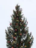 Рождественская елка с гирляндой и звездой Стоковое Изображение