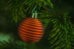 Рождественская елка с красным орнаментом Стоковые Фотографии RF