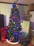 Рождественская елка ohh рождественской елки Стоковые Фотографии RF