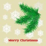 Рождественская открытка с елевыми ветвями Стоковые Изображения