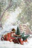 Рождественские елки нося тележки стоковая фотография rf