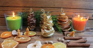 Рождественские елки состава рождества handmade от высушенных плодоовощей Стоковая Фотография RF