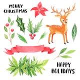Рождество акварели покрашенное рукой флористическое иллюстрация штока