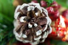 Рождество ананаса Стоковые Фотографии RF