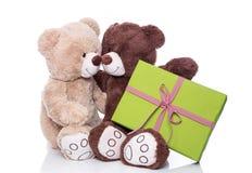 Рождество: 2 изолировали плюшевые медвежоат в влюбленности держащ зеленые pres Стоковая Фотография RF